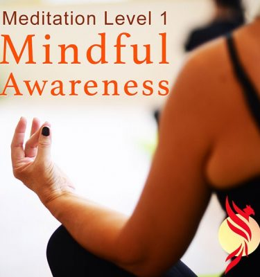 meditation course level 1